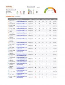 Receive a weekly PDF that shows Google ranks for both local business